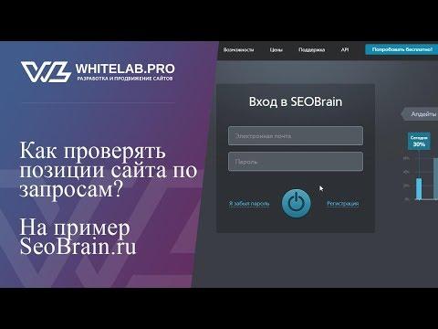Как проверять позиции в поисковиках? На примере Seobrain.ru