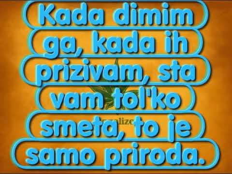 Rasta-Legalizuj (Serbian rap)+lyrics (Text)