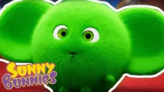 Sunny Bunnies - Halloween Compilation - Funny Cartoons for Children