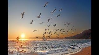 Дюны, рай и чебурекас. Рассказ.
