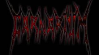 Watch Carnarium Fenix video