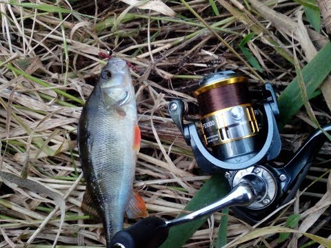 рыбалка спинингом на мормышку
