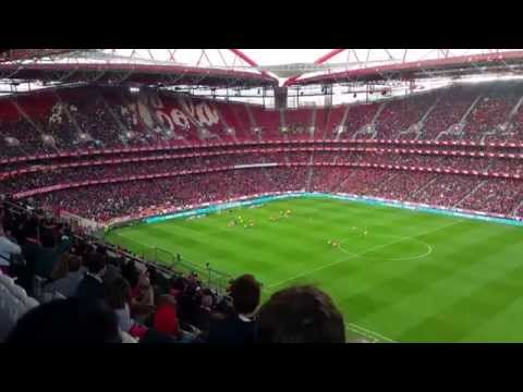 Benfica 6 x 0 Estoril Lima penalty (4K) 28/2/2015