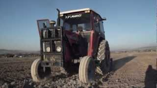 Massey Ferguson 265s at Farm Jobs 2011