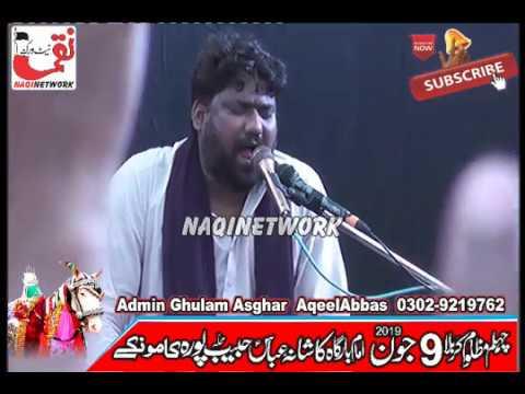 Zakir Imran Khadim Bijli  9 June 2019 Majlis e Aza Habib Pura Kamoke Gujranwala