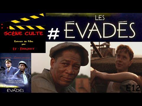 Scène Culte 12 # Les évadés (The Shawshank Redemption) streaming vf