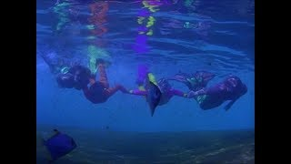 Merman Barnaby giving Sabrina and Gwen a guided reef tour