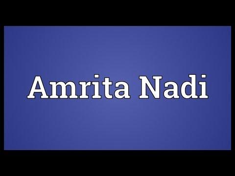 Header of amrita nadi