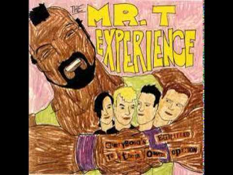 Mr T Experience - Disconnection