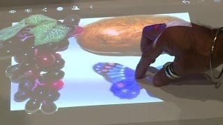 ماسحات ضوئية تحول الأجسام إلى صور ثلاثية الأبعاد- 4تك الحلقة 213