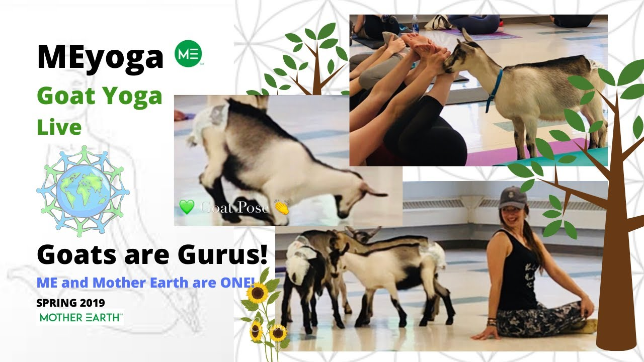 MEyoga And Goats @CRMHS