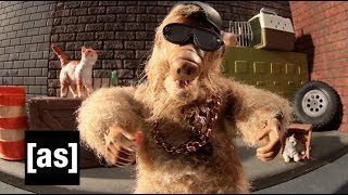 ALF Eats Gourmet Cats | Robot Chicken | adult swim