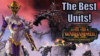 The Best Unit for Every Faction - Total War Warhammer Series Top Units