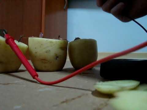 Experiência da batata fonte de energia, pilha  06/11/2011