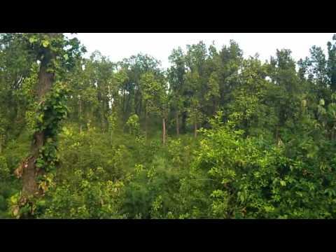 Meet Gill ,,,,,,,,, J Jatt Bigad Geya ,,,tera Ah Nakhra Ni Rehna video