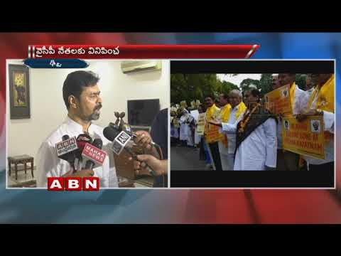 TDP MPs protests at Parliament , Demands special status for Andhra Pradesh