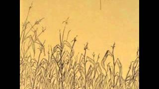 Watch Pine Monocles video