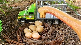 Lost Dinosaur Egg - Jurassic World | Car Toys | Truck | Video For Kids