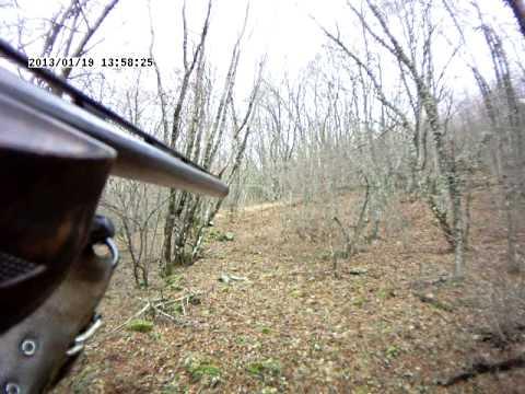 κυνηγι αγριογουρουνου Λεκανη Καβαλας