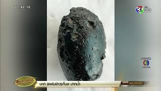 สาวลำปางพบหินสีดำประหลาดตกลงมากลางทุ่งนา คาดเป็นหินจากดาวเคราะห์นอกโลก