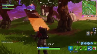 The best player of Fortnite with me
