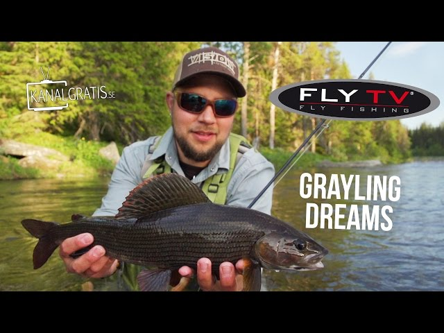 FLY TV - Grayling Dreams - Fly Fishing for Big Grayling