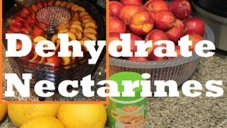 How to make Dehydrated Dried Nectarine Fruit with Waring Pro Food Dehydrator