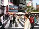 In the Crossroad of Shibuya square