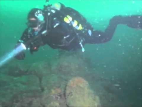 Dive Alaska clip.mov