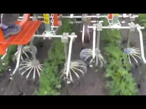 rotosark bineuse weeding machine hackmaschine sarcleuse weed control