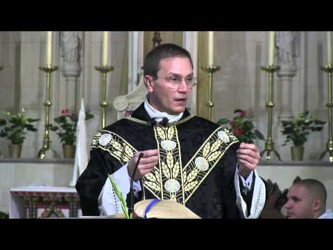 The Joy of the Gospel: Homily by Fr Michael Branch. A Day With Mary