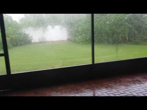 Просто дождь во Флориде