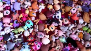 Littlest Pet Shop Collection 2011!