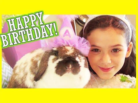 ANGEL'S BIRTHDAY PARTY!  |  KITTIESMAMA