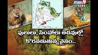 తెలంగాణ అటవీ ప్రాంతంలో అంతరించిపోతున్న వన్య ప్రాణులు