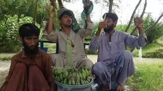 funny boys singing songs
