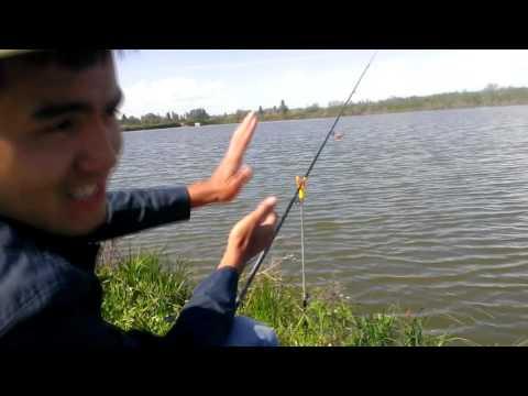 Рыбалка на озере CarpLake