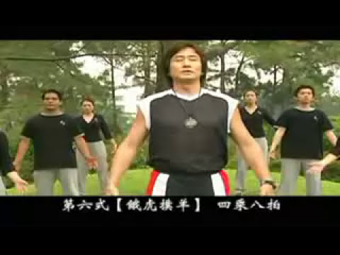 Qigong Aerobic