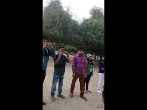 play in park lemon run @ our staff party in dubai al momzar