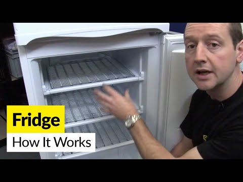 How a fridge works