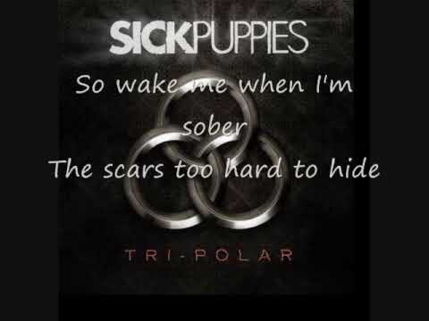 Sick Puppies - Shouldve Known Better