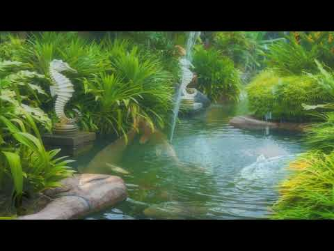 8 HOURS of Relaxing Music - Meditation, Sleep, Spa, Study, Zen