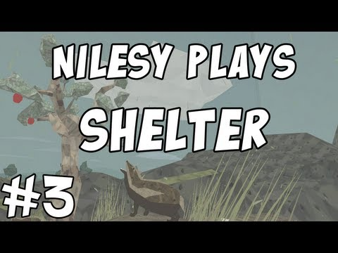 Shelter with Nilesy: FINALE!