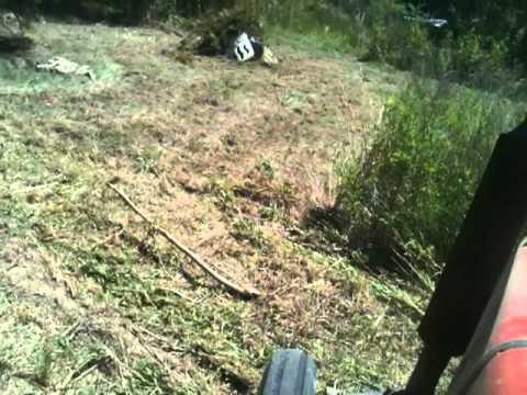 Massey Ferguson 231 bush hoggin'
