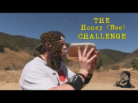 Dude Drinks A Gallon Of Honey While Covered In Bees  Warning  Vomit Alert