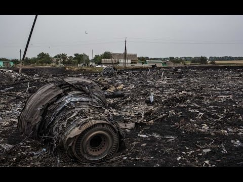 Another Malaysian Airlines Flight Crashes, Allegedly Shot Down