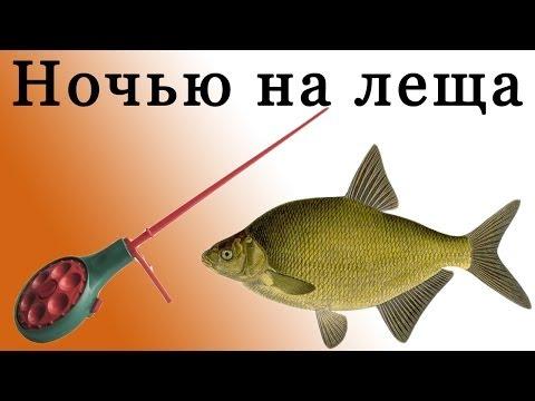 форум о рыбалке на леща