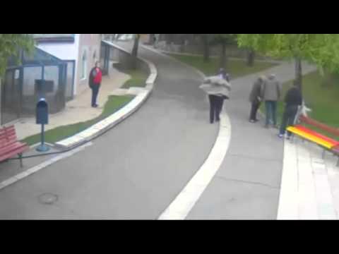 Cámara de seguridad capta ataque de perro a niña de 2 años