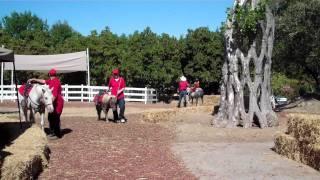 naina horse riding
