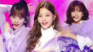 Hot Iz One La Vie En Rose 아이즈원 라비앙로즈 Show Music Core 20181117